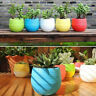 5Pcs Artificial Succulent Potted Plants Small Fake In Pots Indoor Outdoor Decor