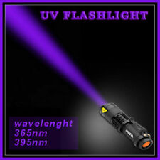 UV-Light