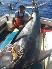 9//0 Croakie  Hawaii/'s Secret Tuna Killer