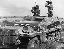 WWII B&W Photo Afrika Korps Armored Half Track Germany Sdkfz. 251 WW2 / 4068