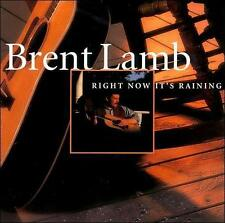 Brent Lamb - Right Now It's Raining (CD, 2002, Insync Music, USA) Autographed