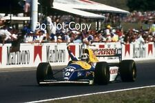 Damon Hill Williams FW15C WINNER ungherese GRAND PRIX 1993 fotografia 1