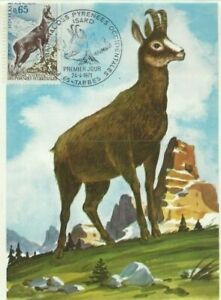Card Postal CEF 1er Day France Protection of The Nature THE CHAMOIS 1971