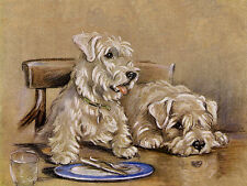 SEALYHAM TERRIER CHARMING DOG GREETINGS NOTE CARD TWO SWEET DOGS SIT AT TABLE