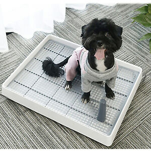 Puppy Dog Potty Tray Pad Holder with Removable Post Toilet Poodles Training Tray