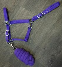 Showman Full Horse Size 2 Ply Nylon Halter with 7ft Braided Cotton Lead Rope