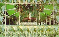 The Grape Bar framed in wrought iron THE KAPOK TREE INN CLEARWATER, FL