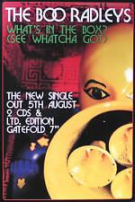 The Boo Radleys 1996 What's In The Box Original U.K. Promo Poster