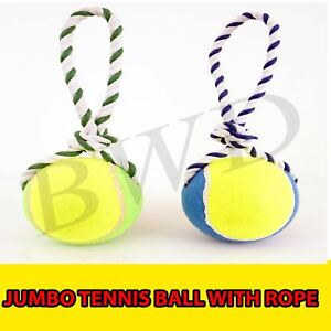 Pack of 2 Heavy Duty Jumbo 16 Cm Tennis Ball with Rope Dog Toy