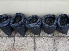 ANTHRACITE BEANS 5 x 20KG BAGS SMOKELESS FUEL SOUTH YORKSHIRE