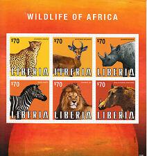 Liberia 2013 MNH Wildlife of Africa 6v M/S Animals Zebra Lion Rhino Warthog