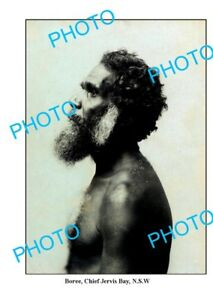 OLD LARGE PHOTO ABORIGINAL 'BOREE' CHIEF OF THE JERVIS BAY TRIBE c1900