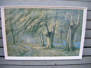 Vintage Framed Boots Picture Print ~ Springtime in the Woods by D. Sherrin