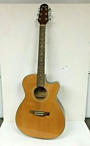 Electro Acoustic Guitar, Ashland Crafter, SF40 (72141/CH)