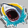 Shark Attack Dangerous Vinyl Sticker Decal Window Car Van Bike 3506