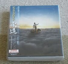 PROMO issue! PINK FLOYD Japan DELUXE BD version TOWA CD box MORE PF listed OBI