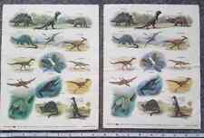 1988 SCHOLASTIC vintage sticker sheets LARGE Dinosaur theme Joel Iskowitz