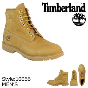 Timberland Men's 6 Inch Basic Boots (A111F, 10066, 400g insulation, Waterproof)