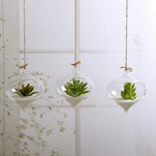 Hanging Ball Glass Flower Planter Vase Terrarium Container Landscape Bottle