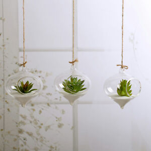 New Hanging Ball Glass Flower Planter Vase Terrarium Container Landscape Bottle