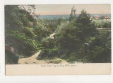 View From Top Of Bog Hill Ascot Vintage Postcard Butcher / JG Longhurst 715a
