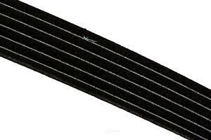 Serpentine Belt ACDelco GM Original Equipment 12576454