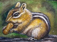 Watercolor Painting Chipmunk Nut Peanut Nature ACEO Art .