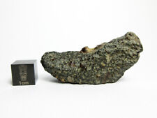 New listing Nwa 6925 L3.15 (S1,W2) 15.64g Crusted Fragment Meteorite of Rare Class