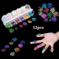 12 Colors 3D Decoration Real Dry Dried Flower for UV Gel Acrylic Nail Art Tips