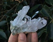Clear Quartz Cluster Himalayan Crystal /Mineral High Grade