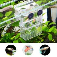 Aquarium Fish Breeding Box Hatchery Shrimp Fish Tank Useful Isolation K1C6