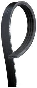 Serpentine Belt-Premium OE Micro-V Belt Gates K040445