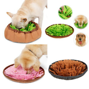 Fanct Pet Dog Cat Slow Feeder Bowl Puppy Kitten Avoid Choke Slow Down Feeding Dish