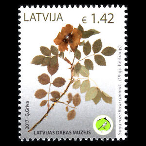 "Latvia 2017 - Flora ""Latvian Museum of Natural History"" Plants - MNH"