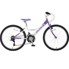 "Probike Speedster Boys 20"" Wheel Mountain Bike VGC"