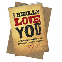 #884 VALENTINES CARD / BIRTHDAY CARD i really love you I'm awesome Rude / Funny