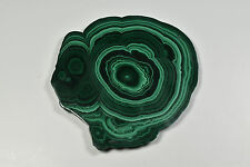 Malachite Slice Africa 9.6 cm 110 Grams # 978