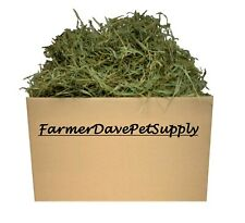 FarmerDavePetSupply 10 lb PREM. 2nd Cut Timothy Hay-Bunny,Chinchilla,Guinea Pig