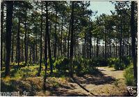 Fantasie - Cpsm - Wälder und Malerische De France (I 5369)