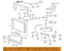 GM OEM Radiator-Bypass Hose Right 25952878