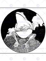 FROG HEATH ROBINSON ART PRINT POSTER PICTURE HP324