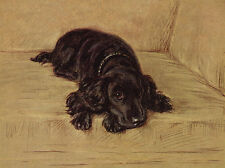 COCKER SPANIEL CHARMING DOG GREETINGS NOTE CARD BEAUTIFUL BLACK DOG ON SETTEE