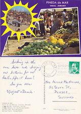 1990 DUAL VIEWS OF PINEDA DE MAR COSTA DORADA SPAIN COLOUR POSTCARD