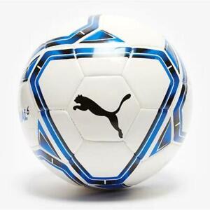 Puma teamFINAL 21.6 MS Ball. White/Blue