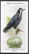 OGDENS-BRITISH BIRDS & THEIR EGGS-#34- ROOK