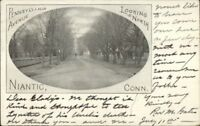 Niantic CT Pennsylvania Ave c1905 Postcard