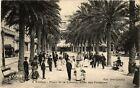 CPA TOULON Place de la Liberté-Allée des Palmiers (338459)