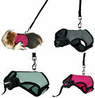 Guinea Pig Full Body Soft Padded Harness & Elasticated Leash Various Colours