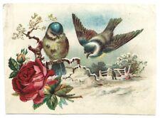 """LION COFFEE"" (1885) ""LOVE BIRDS"" Large Trade Card *WOOLSON SPICE - Toledo, Ohio"