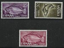 Sahara española